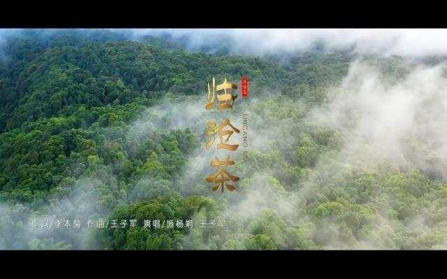 視(shi)頻 歌曲MV之《臨滄(cang)茶(cha)》