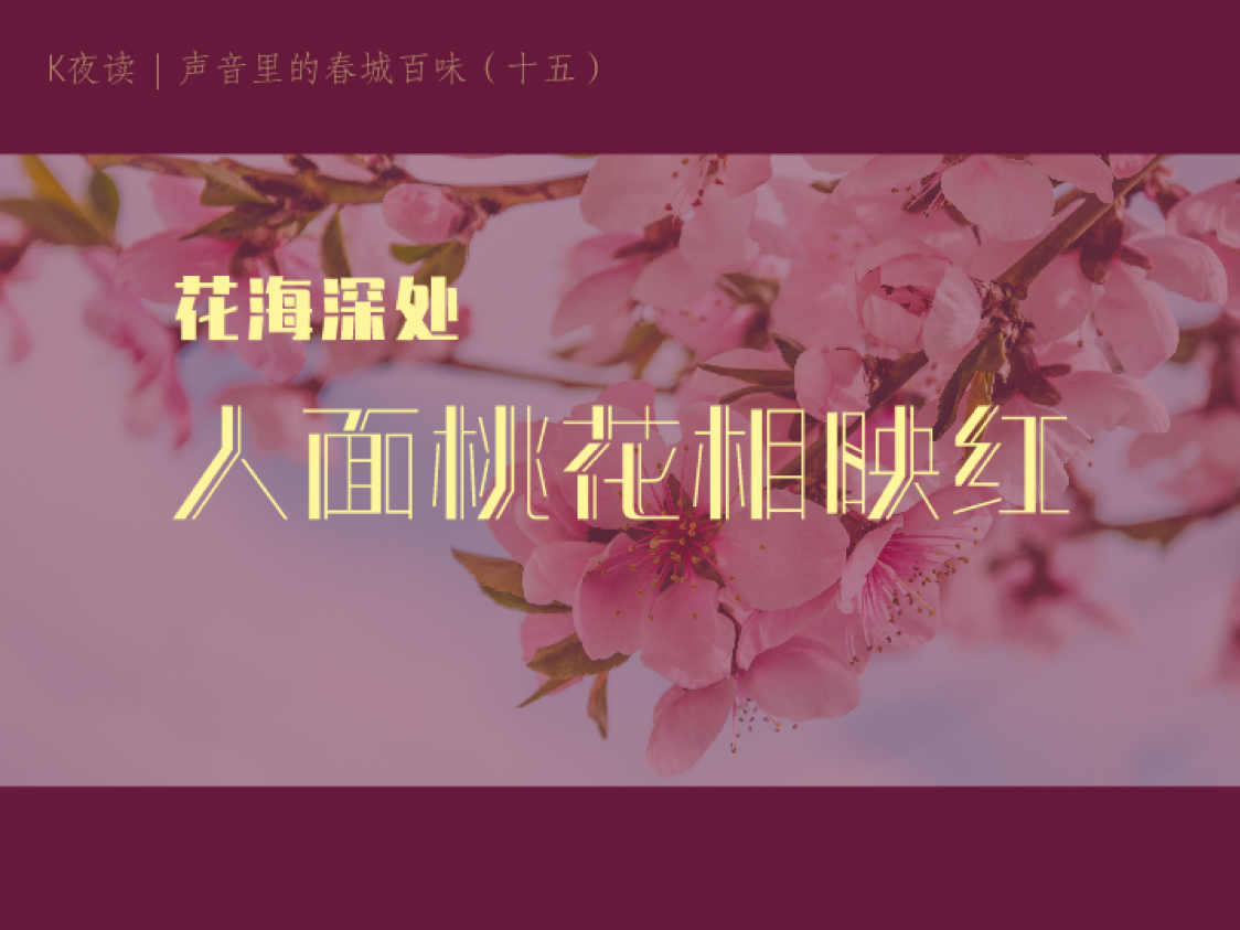 K夜(ye)讀 聲音里的(de)春城百味(十五(wu))——花(hua)海(hai)深處︰人面yan)一hua)相映紅